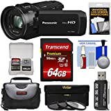 Panasonic HC-V800 Wi-Fi Full HD Video Camera Camcorder 64GB Card + Case + 3 Filters + Kit