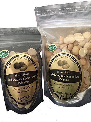 Premium Hawaiian Sea Salt and Macadamia Oil Macadamia Nuts - Hawaii - Half Pound Bag