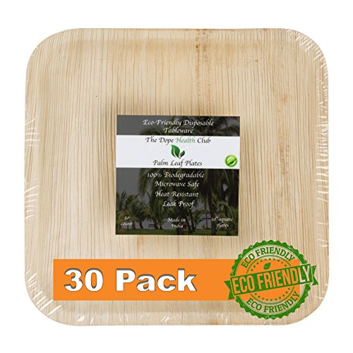 30 Pack Disposable Wood Plates, All Natural 10 Square Palm Leaf Plates, Perfect Wooden Plates for BBQ, 100% Biodegradable