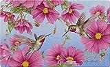 Toland Home Garden Hummingbirds with Pink 18 x 30 Inch Decorative Spring Flower Floor Mat Bird Doormat