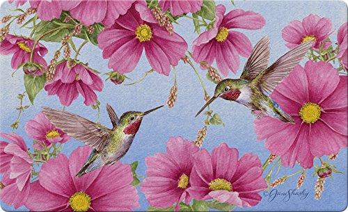 Hummingbird Floor Mat - Toland Home Garden Hummingbirds with Pink 18 x 30 Inch Decorative Spring Flower Floor Mat Bird Doormat