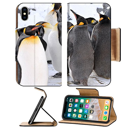 Asahiyama Zoo (Luxlady Premium Apple iPhone X Flip Pu Leather Wallet Case IMAGE ID: 26964068 King Penguin Colony at the Asahiyama Zoo Japan)