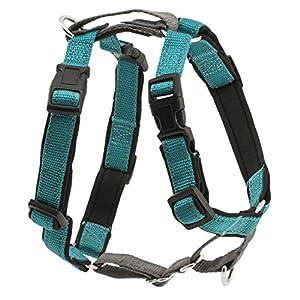 PetSafe Teal 3-in-1 Harness, Medium