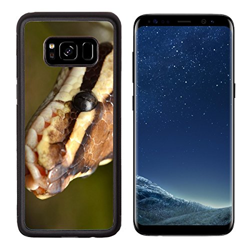 - MSD Premium Samsung Galaxy S8 Aluminum Backplate Bumper Snap Case IMAGE ID: 37501854 Fire Ball Snake close up eye and detail scales