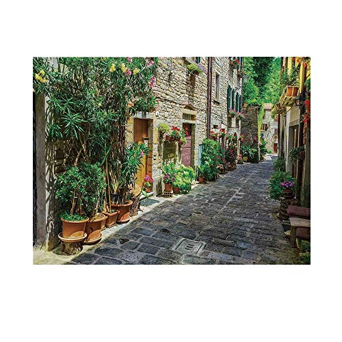 Tuscan Photography Background,Doorway to Tuscan House Build with Cobblestone with Many Flowering Plants Backdrop for Studio,7x5ft