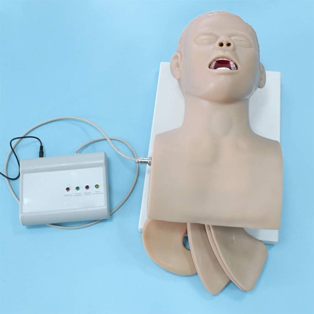 LIYT Maniquí Modelo de enseñanza Oral, intubación Nasal Modelo Humano tráquea Médico Simulador de 220V Electrónico de Gestión de la vía aérea Trainer Simulador,50 * 40 * 27cm