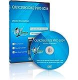 Learn QuickBooks Pro 2014 Training Video Tutorials