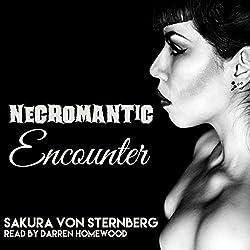 Necromantic Encounter