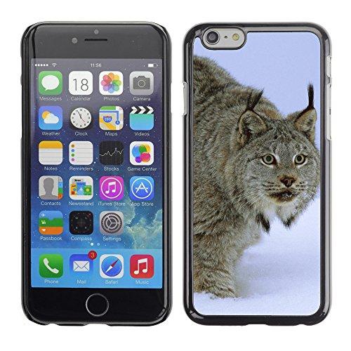 "Premio Sottile Slim Cassa Custodia Case Cover Shell // V00003879 stalking canada idaho lynx // Apple iPhone 6 6S 6G PLUS 5.5"""