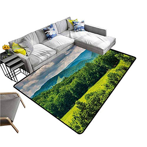 (Floor Mat Entrance Doormat Landscape,View of Mountains in Potomac Highlands of West Virginia Rural Scenery Picture,Forest Green 48