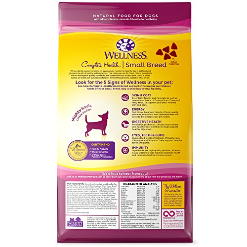 Wellness-Complete-Health-Natural-Dry-Small-Breed-Senior-Dog-Food-Turkey-Peas-4-Pound-Bag