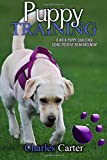 Puppy Training: 8-week puppy challenge using positive reinforcement