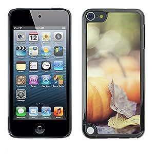 FECELL CITY // Duro Aluminio Pegatina PC Caso decorativo Funda Carcasa de Protección para Apple iPod Touch 5 // Autumn Nature Halloween Leaves