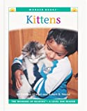 Kittens, Cynthia Fitterer Klingel and Robert B. Noyed, 156766797X
