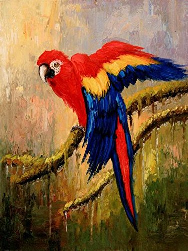 Perfect Effect Canvas  The High Quality Art Decorative Canvas Prints Of Oil Painting A Parrot  18X24 Inch   46X61 Cm Is Best For Garage Decor And Home Decoration And Gifts