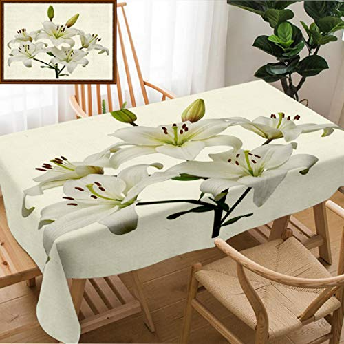 (Skocici Unique Custom Design Cotton and Linen Blend Tablecloth Asiatic Lily Plant with Five Flowers and Two Buds Stem and Leaves Isolated On WhiteTablecovers for Rectangle Tables, 78