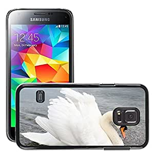 Hot Style Cell Phone PC Hard Case Cover // M00116873 Swan Water Animal White // Samsung Galaxy S5 MINI SM-G800