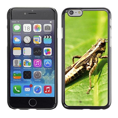 """Premio Sottile Slim Cassa Custodia Case Cover Shell // V00003366 sauterelle sur feuilles // Apple iPhone 6 6S 6G PLUS 5.5"""""""
