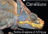 Cameleons - Petits Dragons D afrique. 2018: Douze Portraits Extraordinaires Des Plus Surprenantes Especes De Cameleons. (Calvendo Animaux) (French Edition)