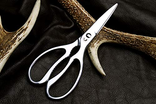 Buy cooking shears