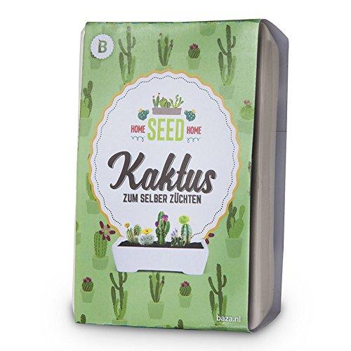 Baza Anzuchtset Kaktus zum Selbstzüchten