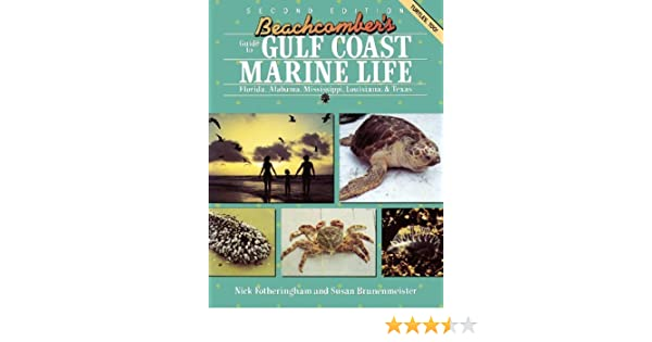 Beachcombers guide to gulf coast marine life florida alabama beachcombers guide to gulf coast marine life florida alabama mississippi louisiana texas nick fotheringham susan l brunenmeister 9780872011861 fandeluxe Choice Image