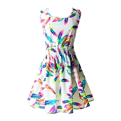 tobyak-womens-casual-summer-fit-and-flare-floral-sleeveless-dress-chinese-feather-fashion-style