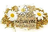 Naturevibe Botanicals Chamomile Flowers Herbal Tea, 1lb | Non-GMO and Gluten Free | Add to Tea | Origin - Egypt