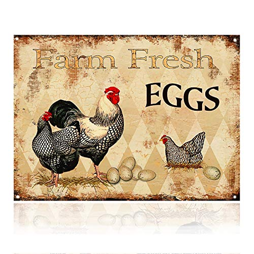 M-Mount Tin Signs Farm Fresh Eggs Designs Coffee Time Retro Vintage Decor Metal Bar Country Home Bedroom Creative Wall Restaurant Hang Sign12x8 (Decor Sign Metal)