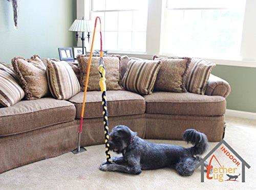 Tether Tug Indoor Interactive Dog Toy