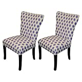 Sole Designs Bella Collection Modern Wingback Dining Chair