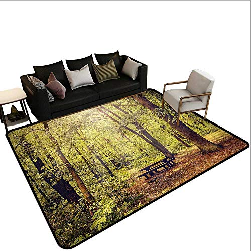 Forest,Entrance Modern Area Rugs 36