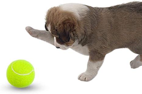 Etop High Pet Pelota de Tenis Juguete para Perros Gatos ...