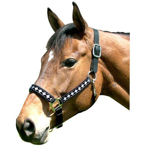 Intrepid International Leather Crown Diamond with Padded Nose Halter, Black/Silver, Cob