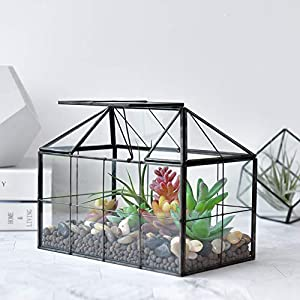 Xcman Large Tabletop Greenhouse House Shape Glass Terrarium Succulent Plant Terrarium Clear Glass Terrarium 93x75x53
