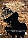 Sherlock Holmes, un nouveau limier pour le XXIe siècle : Du Strand Magazine au Sherlock de la BBC par Machinal