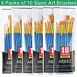 Best Acrylic Paint Brushes - Acrylic Paint Brush Set, 6 Packs / 60 Review