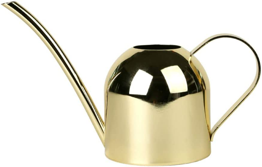 Long Spout Stainless Steel Watering Can 67oz Golden Color Retro Design