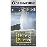 Living Edens: Yellowstone - America's Sacred