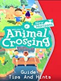 Animal Crossing: New Horizons Guide - Tips And