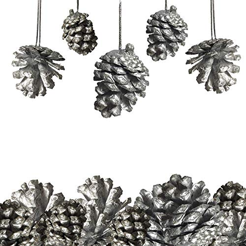 BANBERRY DESIGNS Silver Pine Cone Ornaments - Set of 40 Small Silver Pine Cones - Christmas Hanging Pinecone Ornaments - Silver Painted