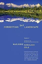 Correcting the Landscape: A Novel