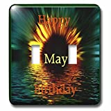 Florene Monthly Anniversary And Birthday Designs - Image of Happy May Birthday As Daisy Sinks In Sunset Water - Light Switch Covers - double toggle switch (lsp_243786_2)