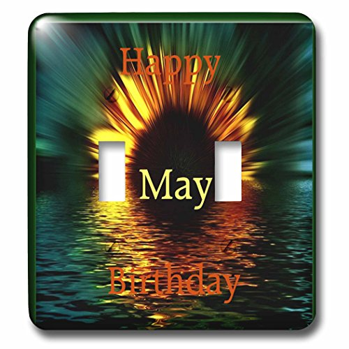 Florene Monthly Anniversary And Birthday Designs - Image of Happy May Birthday As Daisy Sinks In Sunset Water - Light Switch Covers - double toggle switch (lsp_243786_2) by 3dRose