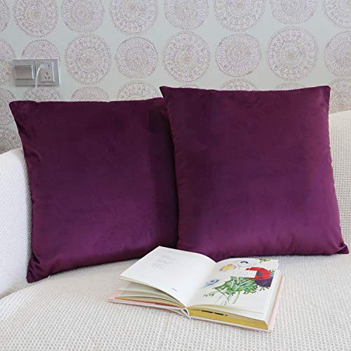 JOJUSIS Pack of 2 Velvet Ultra Soft Solid Decorative Square Throw Pillow Covers Set Cushion Cases for Sofa Bedroom Car Couch 18 x 18 Inch Purple ()