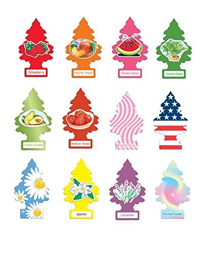 (Little trees air fresheners Scents of Summer Variety 12 Pack )