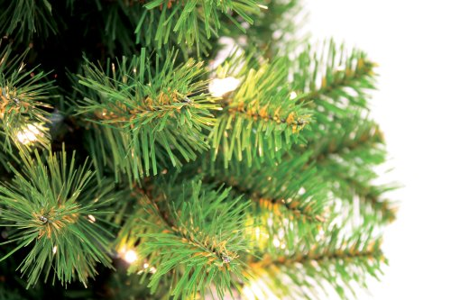 Special Happy Corp LTD Canadian Artificial Prelit Tabletop Christmas Tree, 2-Feet, Clear Lights by Good Tidings (Image #1)