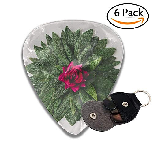 Creative Minimal Arrangement Of Green Leaves And Pink Rose Flower Nature Concept Flat Lay Colorful Celluloid Guitar Picks Plectrums For Guitar Bass .71mm 6 Pack