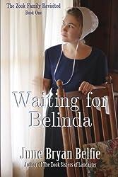 Waiting for Belinda (The Zooks Revisited) (Volume 1)