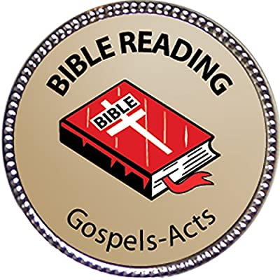 Keepsake Awards Gospels & Acts Bible Reading Award, 1 inch Dia Silver Pin Bible Reading Achievements Collection: Toys & Games